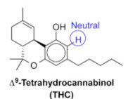 Structure of THC